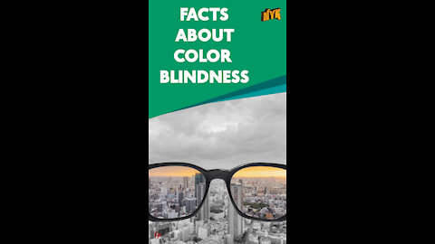 Top 4 Facts About Color Blindness *