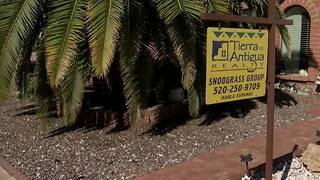 Buy, Sell, or Stay? Tucson Real Estate in '17 - Video