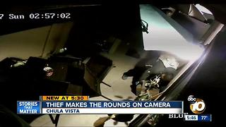 Chula Vista thief makes rounds on camera - Video