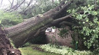 Western New York Storm Damages Homes, Knocks Down Trees - Video