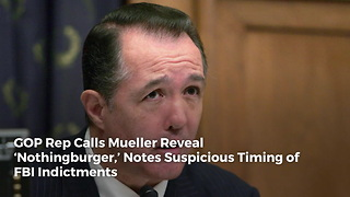 GOP Rep Calls Mueller Reveal 'Nothingburger,' Notes Suspicious Timing of FBI Indictments - Video