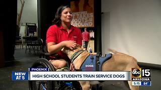 High School students train service dogs