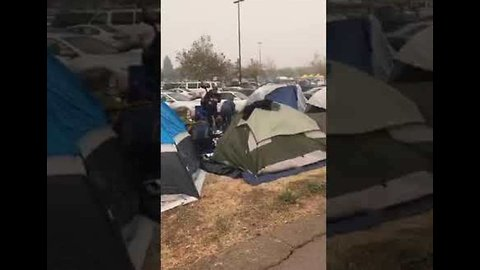 Camp Fire Evacuees Build Tent Camp at Chico Walmart
