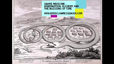 Kitchen Party Snake Medicine, Alchemy, Gratitude & the Blessings of Limbo