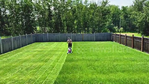 Canada dad shows just how satisfying mowing a lawn can be