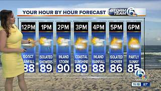 South Florida Tuesday afternoon forecast (7/31/18) - Video