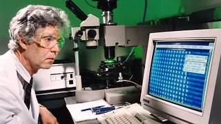 15 Years Ago, Scientists Finished Mapping The Human Genome - Video