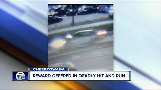 Increased reward for hit-and-run information - Video