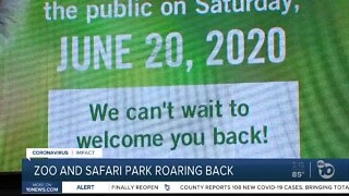 San Diego Zoo and Safari Park reopen June 20th