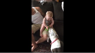 Baby hysterically laughter is extremely contagious