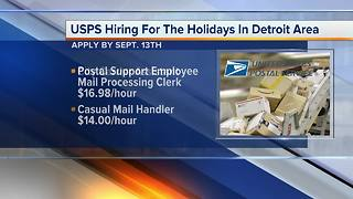 U.S. Postal Service hiring for the holidays in metro Detroti - Video