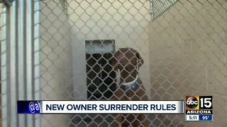New rules for surrendering pets at Maricopa County animal shelter - Video