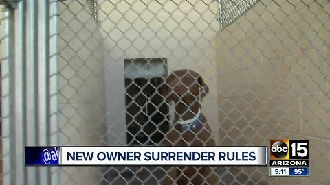 New rules for surrendering pets at Maricopa County animal shelter