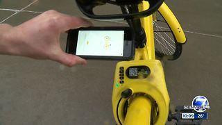 Testing Aurora's dockless bike share system