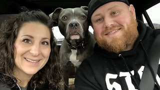 Dog survivor cannot hide excitement at finding out he is cancer free