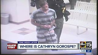 Family of Cathryn Gorospe expands search into National Forest - Video
