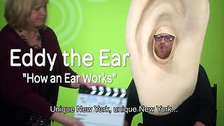 Eddy the Ear - How Hearing Works - Video