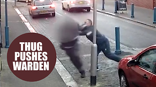 Horrific footage captures the moment a fuming thug hurled a traffic warden to the ground - Video