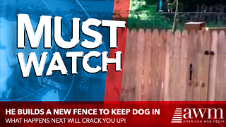 Guy Builds Brand New Fence For His Dog, Now Watch As The Camera Slowly Pans Right - Video