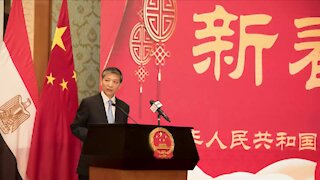 WATCH: Chinese ambassador hails Egypt's support for China's fight against coronavirus (fM2)
