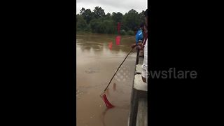 People rush to fish coconuts in flooded river - Video