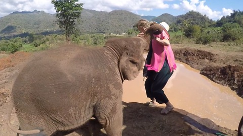 Baby Elephant Pushes Girl Into Watering Hole!