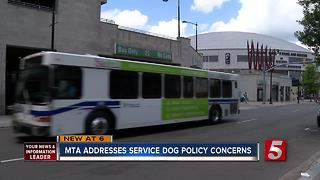 MTA Addresses Service Dog Concerns - Video