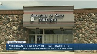 Michigan Secretary of State Backlog