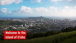 Hawaii Tourism - Oahu - Video