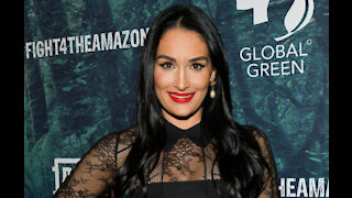Nikki Bella has defends her controversial work life balance
