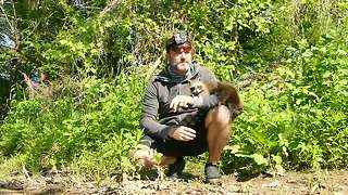 Man has incredible encounter with baby raccoons - Video