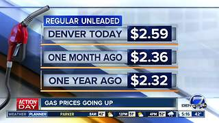 AAA report shows gas prices increasing - Video