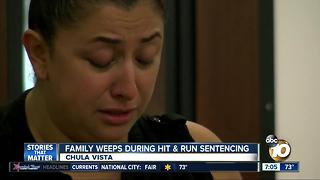 Family weeps during hit and run sentencing - Video