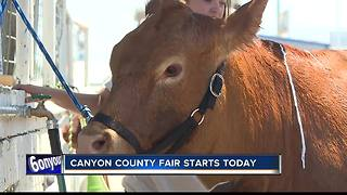 Canyon County Fair begins today - Video
