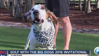 Golf with The Big Dogs 2016 Invitational - Video