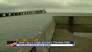 Man falls over skyway fishing pier - Video