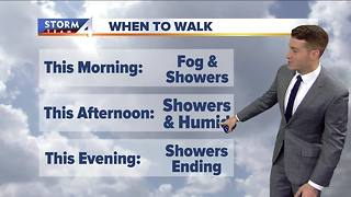 Walking the dog forecast - Video