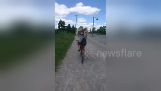 Husky hitches a ride on cyclist's back - Video