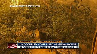 Investigation underway after marijuana grow house found in Brooksville home - Video