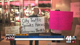 Protesters call horse carriage rides inhumane - Video