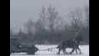 Riding School Puts Its Horse Power to the Test During Snowfall