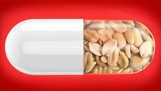 A new study might've found a possible cure for peanut allergies. How does it work? - Video