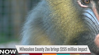 Study reveals MKE Co. Zoo is economic driver - Video