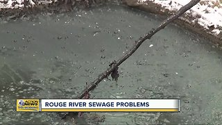Millions of gallons of sewage dumped into Rouge River