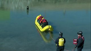 Dog rescued from icy east Tulsa pond - Video