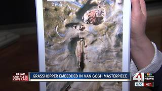 Grasshopper found embedded in van Gogh masterpiece - Video