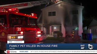 Family's pet dies in Bay Ho house fire