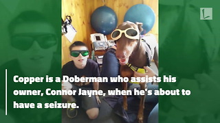 Desperate Little Boy Sells His Toys To Raise Money for Sick Service Dog - Video