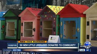 TIAA donating 50 little libraries - Video