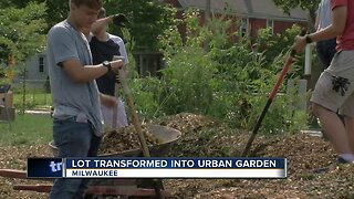 Volunteers transform lot into urban garden